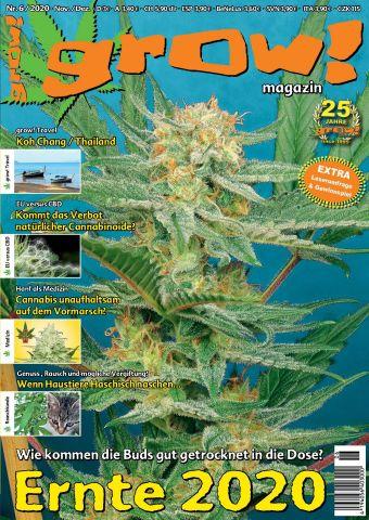 Bild: grow! Magazin